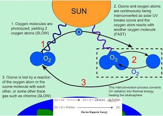 ozoneoxygencycle