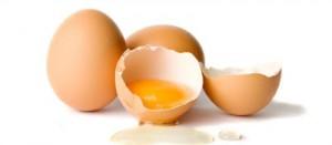 Eggs-MAIN